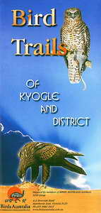 Front cover of Bird Trails of Kyogle and District brochure