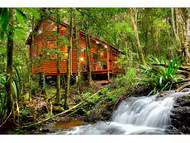 The Mouses House Rainforest Retreat
