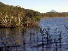 Cudgen Lake with Mount Warning / Wollumbain in background © Big Volcano